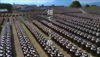 くろずCM(四季編) - from YouTube.mp4_snapshot_00.10_[2014.06.11_13.51.46]